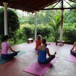 Morning yoga-ayurveda treatment suport