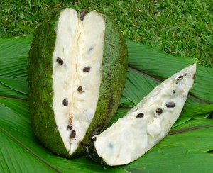 soursop fruit for ayurveda