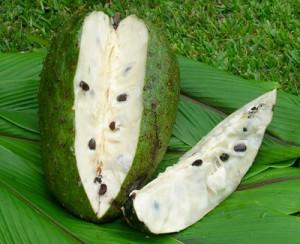 soursop fruit for ayurveda
